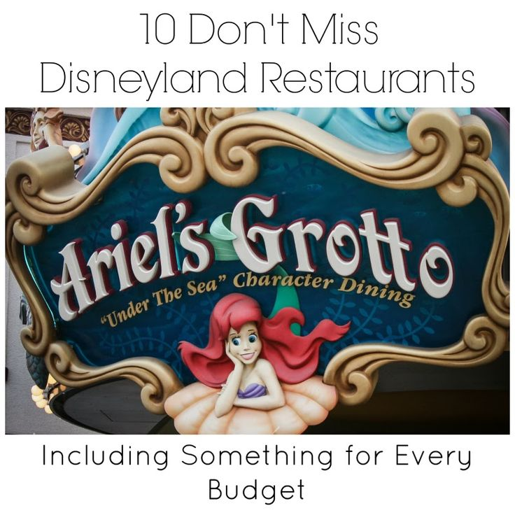 Love Our Disney: 10 Don't Miss Disneyland Resort Restaurants Heading to Disneyland Resort? Trying to decide where to eat? We have a top 10 list and we have included restaurants for every budget. Check out our list and let us know if we forgot one.