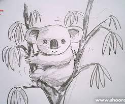 Картинки по запросу рисунки панды карандашом
