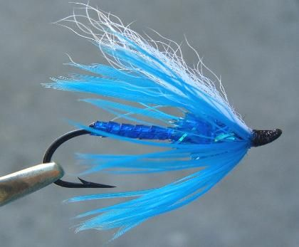Blue Ice Lazer Fly