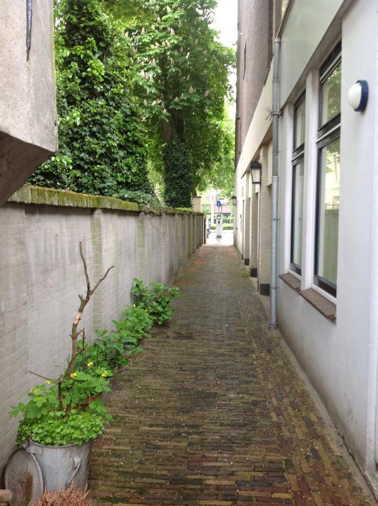Midden in het centrum van Utrecht, in een rustige steeg met historische kenmerken.