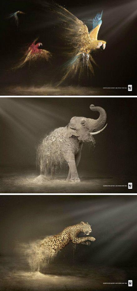 3 poignant public service advertisings Designed by World Wildlife Fund.