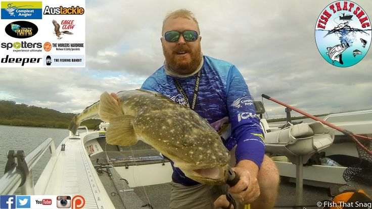 Fish That Snag - Fishing for Flathead - Locations, Tactics, Techniques, ...