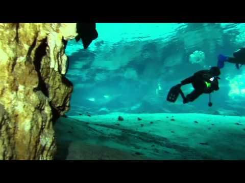 Best Diving Videos Ideas On Pinterest What Is Scuba Diving - An alien world lurks beneath in this creepy cave diving video