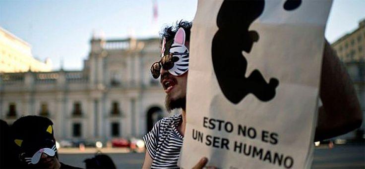 Cientos de feministas demandan despenalizar aborto en El Salvador - Últimas Noticias
