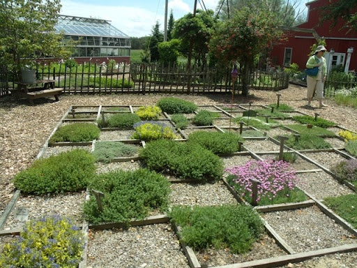 17 best images about herb garden on pinterest terraced for Checkerboard garden designs