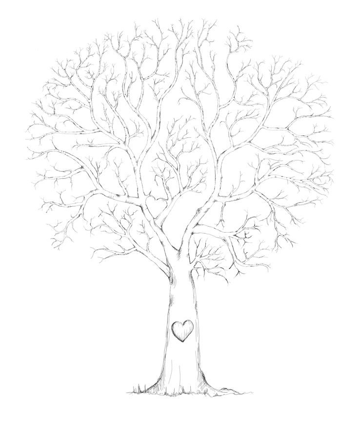 94 best Free printable family tree images on Pinterest