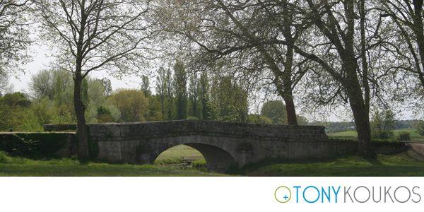 trees, bridge, places, Europe, Tony Koukos, Koukos