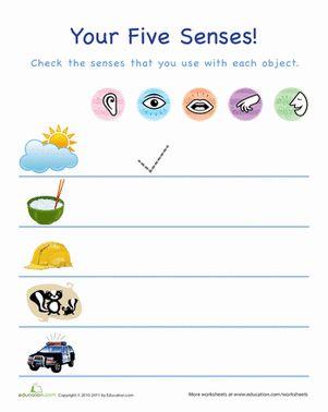 33 best images about pre k five senses worksheets crafts on pinterest preschool worksheets. Black Bedroom Furniture Sets. Home Design Ideas