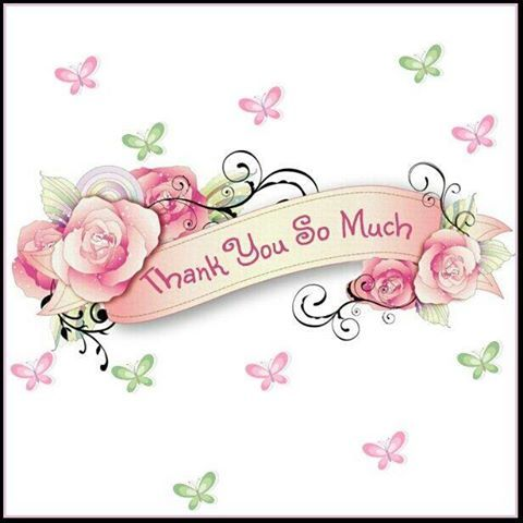 THANK YOU to all the wonderful people who follow my boards and posts <3<3<3