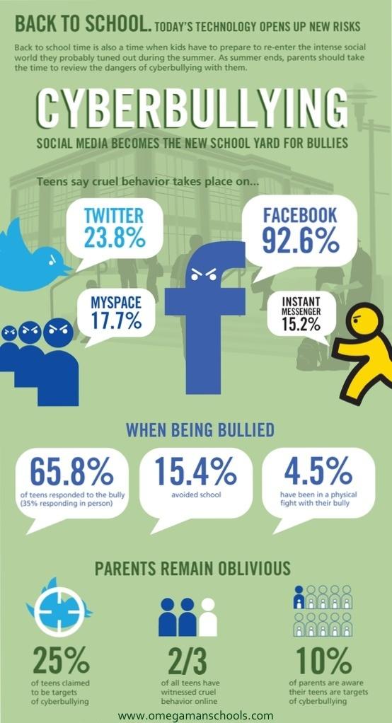 bullying in elementary schools pdf