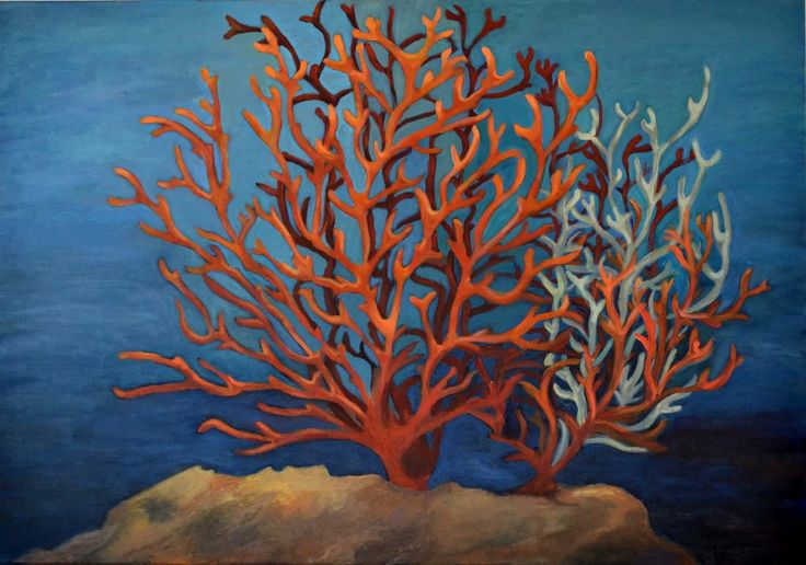 Imaginary Corals, Katerina AnantPal