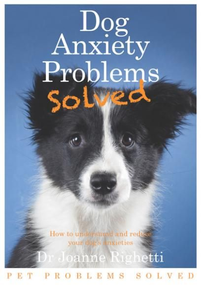Dog Anxiety Problems Solved EBook: Solving Ebook, Problems Solving, Dogs Anxiety, Anxiety Problems, Animal Pet, Behaviour Problems, Dog Anxiety, Pet Problems, Scaredy Dogs