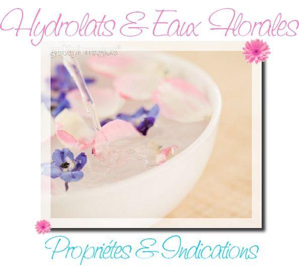 Voici un récapitulatif sur les vertus et l'utilisation des Hydrolats (ou Eaux Florales) qui vous aidera à choisir celui ou ceux qui conviennent le mieux à vos Besoins et à votre Type de peau ! Je ne traite ici que de l'indication Cosmétique des Hydrolats et non de leur usage par Voie Orale. Hydrolat d'Achillée Millefeuille Cet hydrolat est parfait pour les Peaux Mixtes à Tendance Grasse. Anti-inflammatoire, antiseptique, on l'utilisera dans le traitement de l'Acné, de la Couperose. Hydrolat…