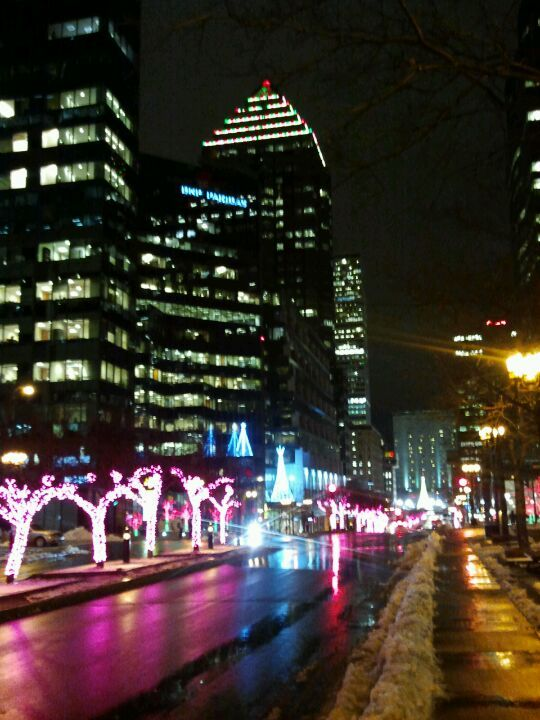 Avenue McGill College / McGill College Avenue in Montreal, QC