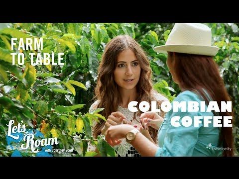 Colombian Coffee From Farm to Table - Let's Roam Colombia with Avianca. Come and visit us at www.Going2Colombia.com