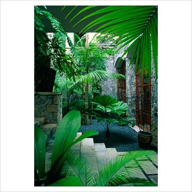 GAP Photos - Garden & Plant Picture Library - Tropical style planting in small courtyard garden with stone steps leading to gravel bed with Cycad palm - Bali - GAP Photos - Specialising in horticultural photography