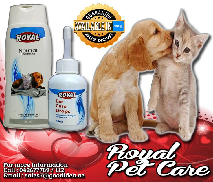 Good grooming is about more than just having a pretty pet. You're also tackling potential health conditions.  •Royal Neutral Shampoo for especially mild care •Royal Ear Care Drop  For affordable prices :) For more information: Call:042677789 loc 112 Email:sales7@goodidea.ae ◘ We are open for those who have petshops,pet store and Good samaritans helping those stray with promotional offer ♥ Also Available in : SOUQ.COM