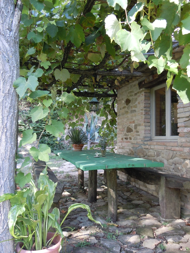 Outside dining area in the already restored farm house in Mondaino, with its charming grapevine overhead