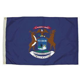 5-Ft W X 3-Ft H State Michigan Flag 2212051