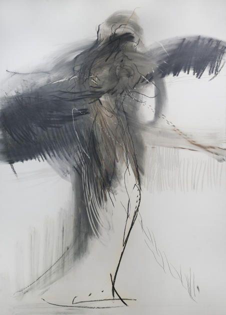 Sort svane av Runi Langum
