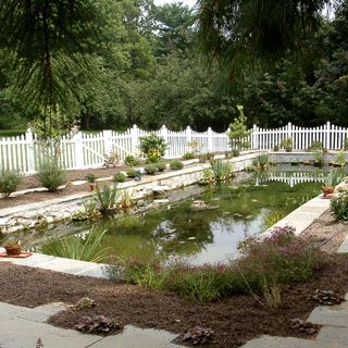 19 Best Convert Pool To Pond Images On Pinterest Ponds Natural Swimming Pools And Landscaping