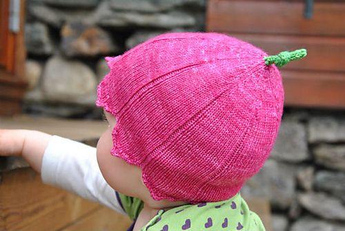rosa villosa  free pattern
