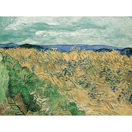 Reprodukcje obrazów Vincent van Gogh Wheatfield With Cornflowers - Fedkolor