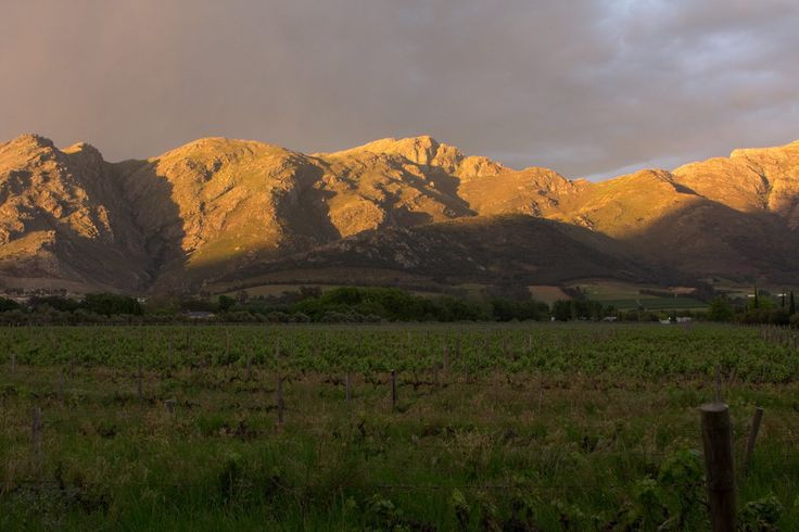 Beautiful late afternoon in Franschhoek .. photo by Lucia du Preez Wedding and Lifestyle Photography #SouthAfrica #Franschhoek