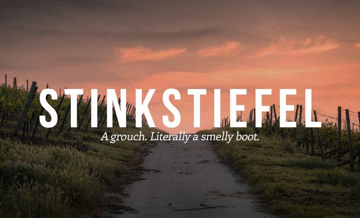 17 Deeply Satisfying German Insults We Need In English