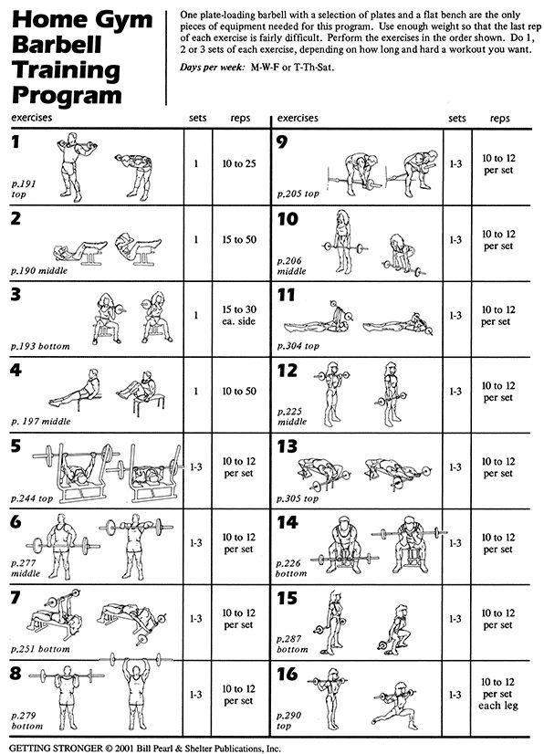 Full Body Workout Routine For Men Pdf