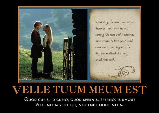 Velle Tuum Meum Est  Quod cupis, id cupio; quod spernis, sperno; tuumque  Velle meum velle est, nolleque nolle meum.
