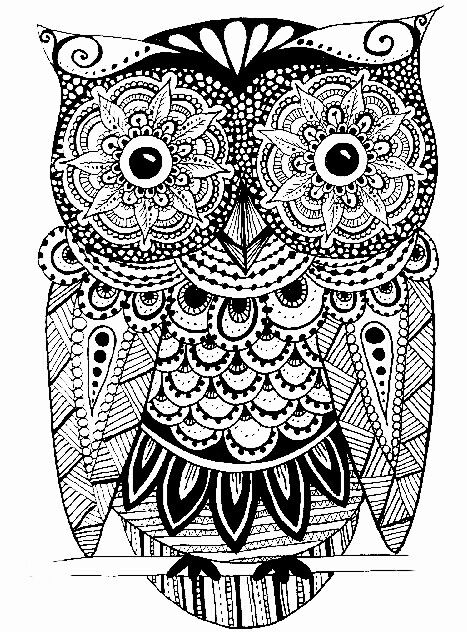 624 best cool coloring pages images on pinterest | coloring books ... - Animal Mandala Coloring Pages Owl