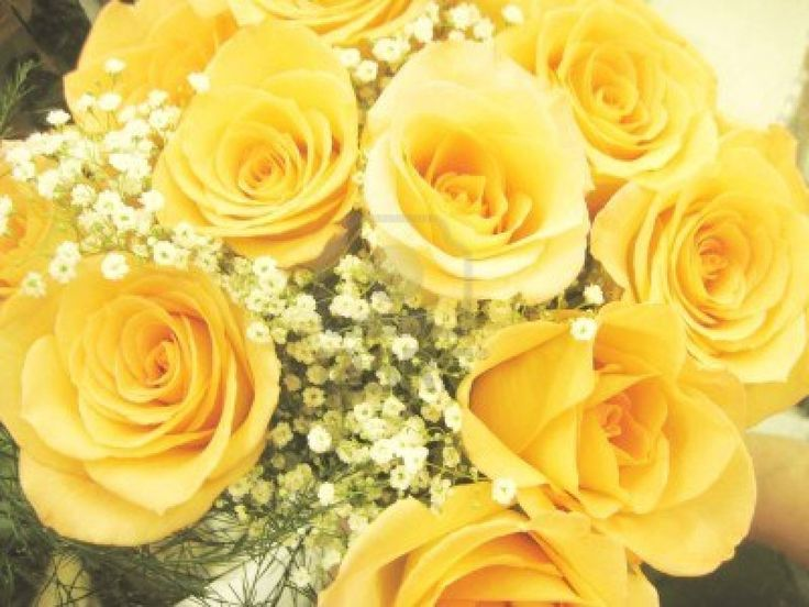 17 Best ideas about Yellow Rose Bouquet on Pinterest ...  Beautiful