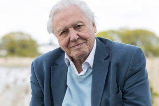 David Attenborough Receiving Death Threats After Controversial Joke - http://viralfeels.com/david-attenborough-receiving-death-threats-after-controversial-joke/