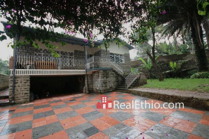 Kebena 3 Bedrooms House For Rent Addis Ababa In Real Estate Ethiopia Has Been Published Addisab Renting A House Commercial Property For Rent Addis Ababa