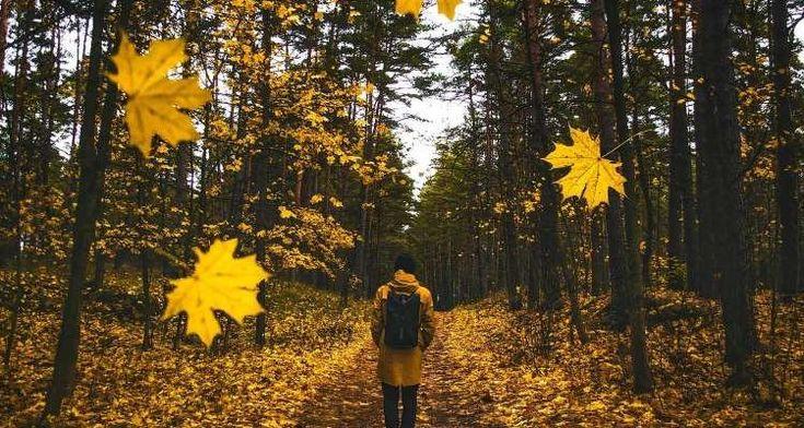 10 προειδοποιητικά σημάδια που μας στέλνει το σύμπαν όταν βρισκόμαστε στο λάθος δρόμο