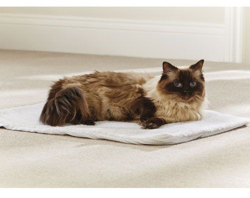 The self heating pet bed is uniquely designed to reflect your pet�s body heat back to them, helping them to keep warm when it gets cold. Ideal for use indoors and out, it can also be used in the car when travelling. Suitable for cats or dogs. Measures 46 x 64cm. Exterior made of machine washable faux lambswool, with a heat reflective thermal insert. Non-slip base.