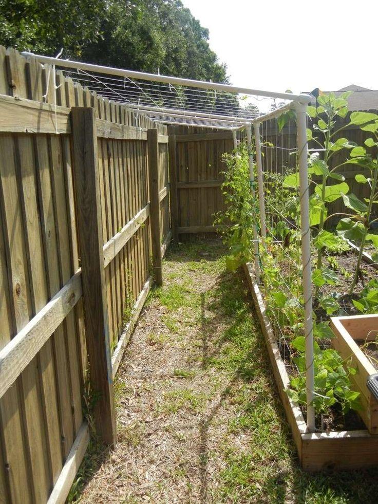 DIY Pvc Trellis #Vegetablegardens