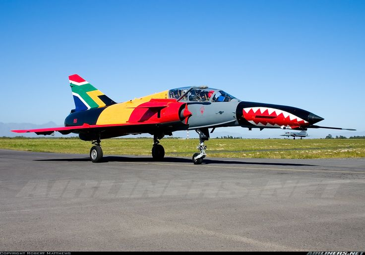 And obviously some people do indeed have a paint shop. South African Cheetah D861 [1280x894]
