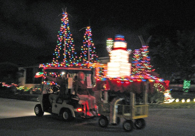 78+ images about Golf Cart Parade Ideas on Pinterest Reindeer, Pink flamingos and Sea shells
