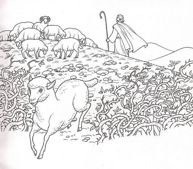 37 best The Lost SheepJesus is the Good Shepherd images on