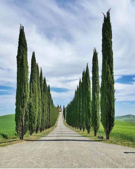 Dreaming of.... #Tuscany! #italy #happymonday
