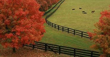 Kentucky, my home.