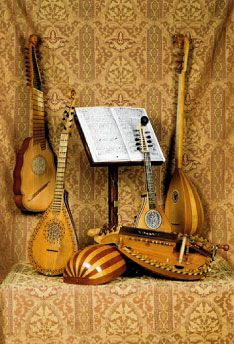 Tudor Musical Instruments: the lute, hurdy gurdy, orpharion, citterns and colascoine.