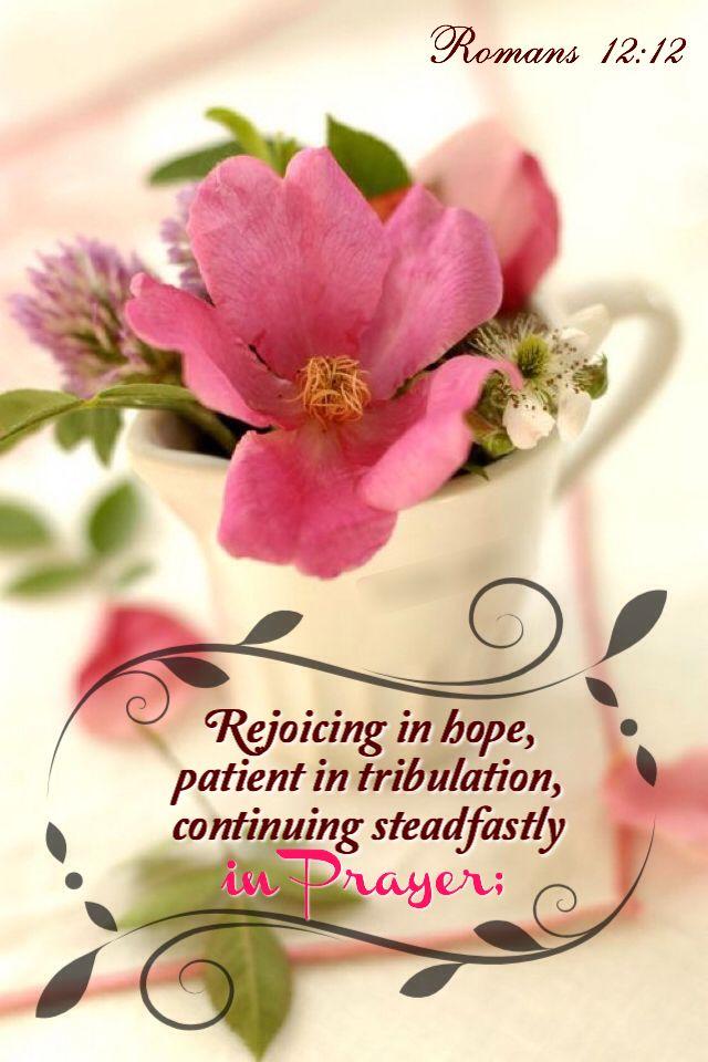 Romanos 12:12 gozosos en la esperanza; sufridos en la tribulación; constantes en la oración. ♔