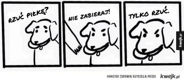 psy takie są.