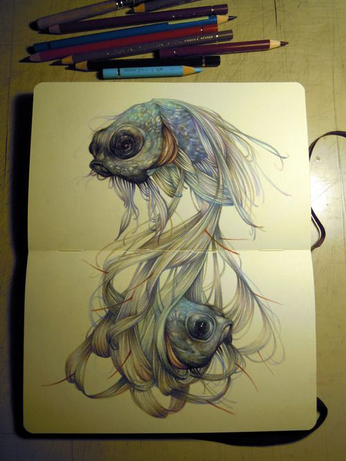 the hairy fish on moleskine  The coloured pencils of Marco Mazzoni