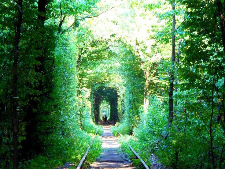 愛のトンネルツアー、恋のトンネルツアー