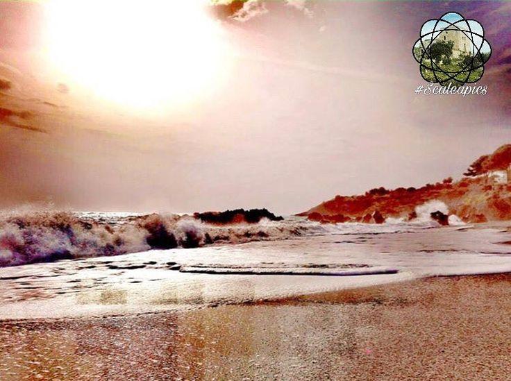 ⚜️foto del giorno ⚜️ ⚜️ @marko85l ⚜️ �� complimenti ����������������������tramonto sulla spiaggia di Scalea ��������������������#view#viaggi#viaggiare#tourist#turista#turistando#fun#instasunset#instatravel#photo#photography#photooftheday#travel#traveling#travelgram#pic#colors#calabria#cosenza#sunset#sunschine http://tipsrazzi.com/ipost/1513578775294585033/?code=BUBT-B5ASjJ