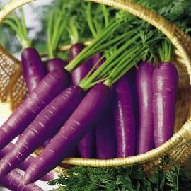 Purple Vegetables | Benefits of Purple Vegetables and Fruits for Health | Healthy Food ...